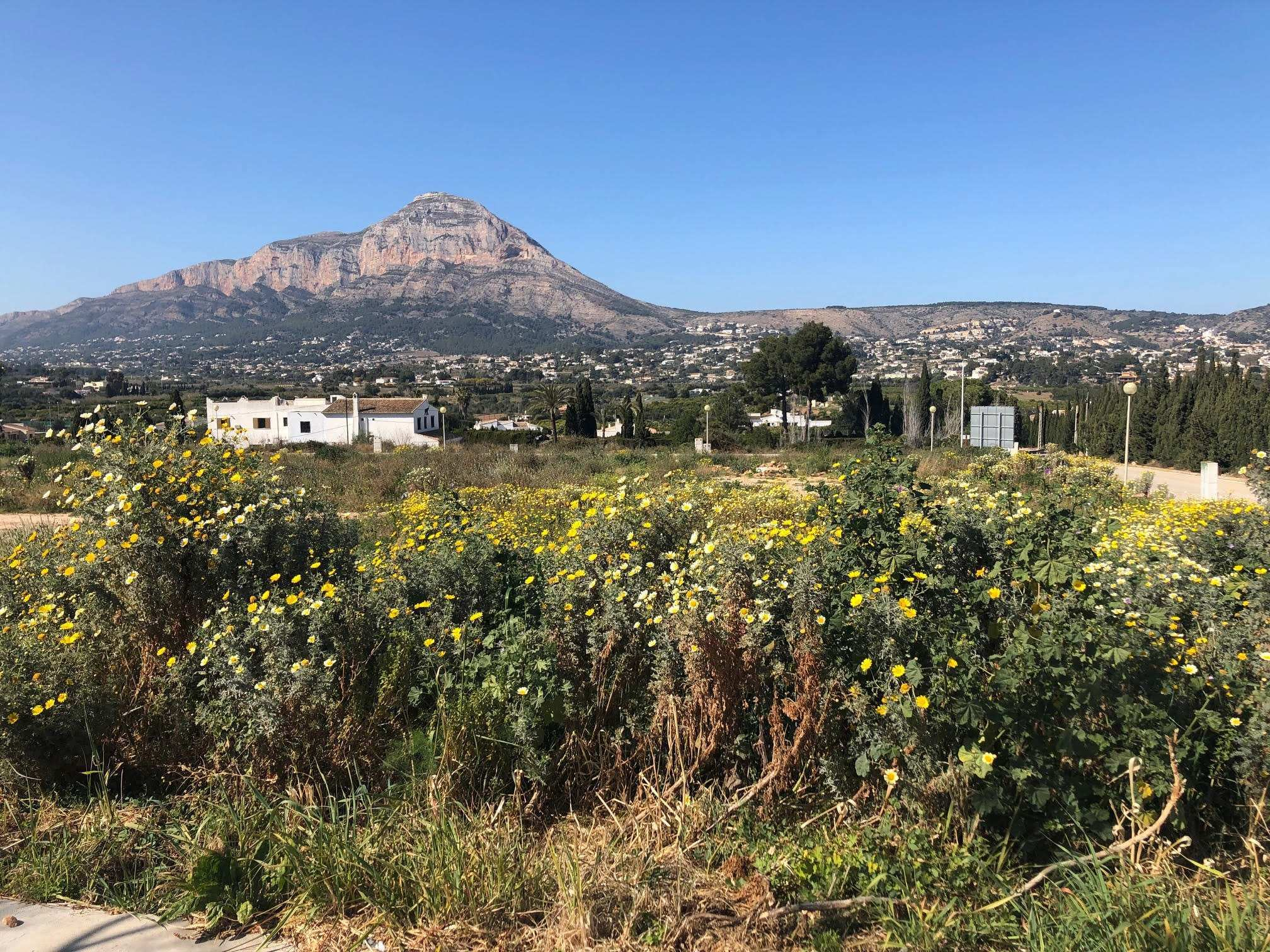 Plot in Javea El Piver